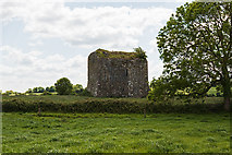 R2842 : Castles of Munster: Ballyegnybeg, Limerick (1) by Mike Searle