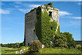 R5159 : Castles of Munster: Cratloemoyle, Clare (2) by Mike Searle
