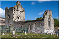 S0425 : Cahir Priory, Tipperary (1) by Mike Searle
