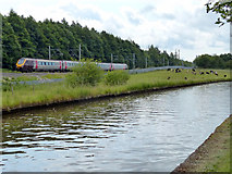 SJ8842 : Virgin train next to the Trent & Mersey Canal by Mat Fascione