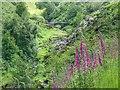 SK0173 : Packhorse Bridge, River Goyt by Mick Garratt