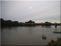 TQ1977 : The Thames at Chiswick by David Howard