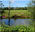 SO3508 : West across the River Usk in the Clytha Estate by Jaggery