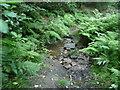 SE0226 : Hebden Royd FP39 crossing a stream in Brearley Wood by Humphrey Bolton