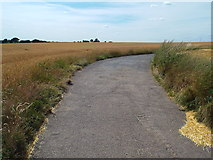 TM1928 : Track to South House Farm, near Great Oakley by Malc McDonald