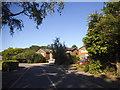 SU9170 : Rhododendron Close, North Ascot by David Howard