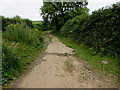SN3807 : Wales Coast Path from Penallt Farm towards Llansaint by Jaggery