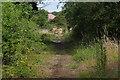 SU8059 : Yateley Common by Alan Hunt