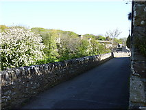 SM7525 : The lane from Pit Street to the Abbey by Jeff Gogarty