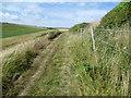 TQ3403 : Path alongside Roedean Bottom by Marathon