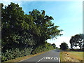 TM1317 : Clay Lane, near St. Osyth by Malc McDonald