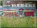 SE0922 : A new exhibit at the Salterhebble graffiti art gallery - 2 by Humphrey Bolton