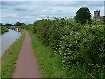 SJ8255 : Trent & Mersey Canal at Church Lawton by Mat Fascione