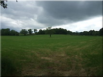 SK2640 : Farmland near Carr Wood by JThomas