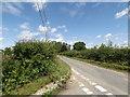 TM1451 : Mill Lane, Barham by Geographer