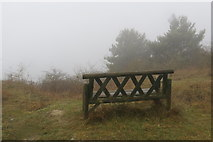 SP9314 : No view from the seat at The Twist, College Lake, today by Chris Reynolds