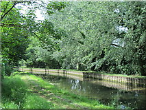 TQ3187 : The New River in Finsbury Park by Mike Quinn