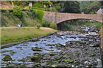 SS7249 : Lynmouth : River Lyn by Lewis Clarke