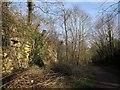 SE3949 : Harland Way by Derek Harper