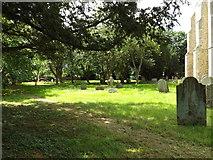 TM1469 : All Saints Churchyard by Geographer