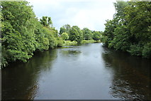 NN6207 : River Teith at Callander by Billy McCrorie