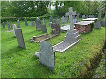 SS6138 : St Michael & All Angels church, Loxhore: churchyard (vi) by Basher Eyre