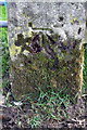 NY6518 : Benchmark on gatepost at Little Clinch by Roger Templeman