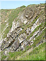 SS2224 : Tilted rock strata near Hartland Quay, Devon by Roger  Kidd