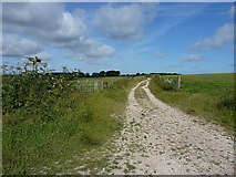 SU8516 : A bridleway crossroads by Richard Law