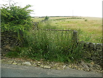 SE0322 : Field gate and nettles on Sowerby Bridge FP104 by Humphrey Bolton