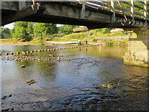 SE0754 : Under  Waterfall  Bridge  to  the  stepping  stones by Martin Dawes