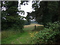 TL9283 : Field entrance off Kilverstone Road by JThomas