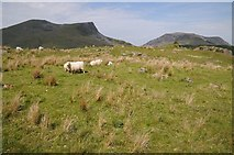 SH5752 : View to the Nantlle Ridge by Philip Halling