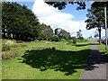 NO4831 : Barnhill Rock Garden by PAUL FARMER