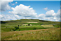NY8612 : Grassy hill slope by Trevor Littlewood