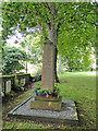 TG1638 : Gresham War Memorial by Adrian S Pye
