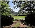 SY3393 : Gate on Wessex Ridgeway by Derek Harper