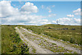 NY8611 : Access road for telecoms aerial by Trevor Littlewood