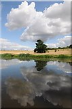 SO8843 : Cloud reflected in Croome River by Philip Halling