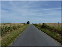 TQ2009 : The road along Beeding Hill by Richard Law