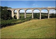SY3192 : Cannington Viaduct by Derek Harper