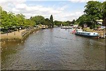 TQ1673 : The River Thames by Eel Pie Island by Steve Daniels