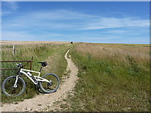 TQ3012 : Bridleway east of New Barn Farm by Richard Law
