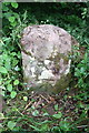 NY6616 : Stone with benchmark in verge of B6260 by Roger Templeman