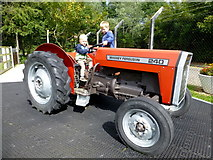 J0558 : Massey Ferguson 240 tractor, Tannaghmore Gardens by Kenneth  Allen