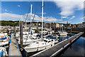 NS0864 : Yacht marina, Rothesay, Bute by David P Howard