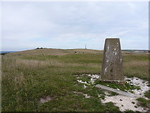 TQ4405 : Red Lion Pond trig by Richard Law