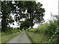 TG1534 : Verges neatly trimmed in Watery Lane, Matlaske by Adrian S Pye