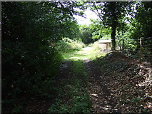 TG2202 : Bridleway off Ipswich Road (A140) by JThomas