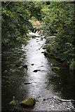 SK1985 : River Derwent by Dave Pickersgill